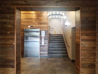 Photo 5: 245 9220 GLOVER Road in Langley: Fort Langley Office for lease : MLS®# C8033648