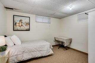 Photo 24: 60 Taylor Way SE: Airdrie Detached for sale : MLS®# A1054088