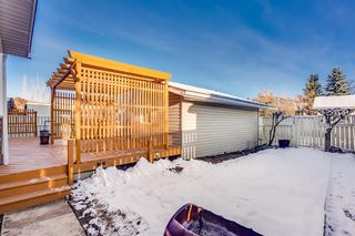 Photo 27: 60 Taylor Way SE: Airdrie Detached for sale : MLS®# A1054088