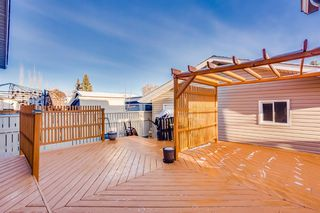 Photo 10: 60 Taylor Way SE: Airdrie Detached for sale : MLS®# A1054088