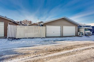 Photo 28: 60 Taylor Way SE: Airdrie Detached for sale : MLS®# A1054088