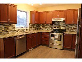 Photo 4: 11167 HARVEST HILLS Gate NE in Calgary: Harvest Hills Residential Detached Single Family for sale : MLS®# C3649742