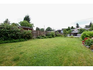 Photo 18: 2130 GERALD Avenue in Burnaby: Montecito House for sale (Burnaby North)  : MLS®# V1127017