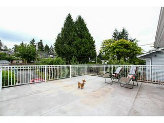 Photo 19: 2130 GERALD Avenue in Burnaby: Montecito House for sale (Burnaby North)  : MLS®# V1127017
