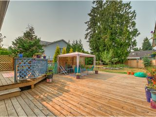 Photo 14: 19269 PARK Road in Pitt Meadows: Mid Meadows House for sale : MLS®# V1132971
