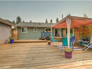 Photo 15: 19269 PARK Road in Pitt Meadows: Mid Meadows House for sale : MLS®# V1132971