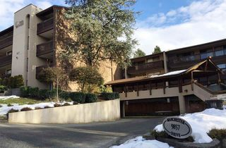 "Main Photo: 219 9857 MANCHESTER Drive in Burnaby: Cariboo Condo for sale in ""BARCLAY WOODS"" (Burnaby North)  : MLS®# R2132114"