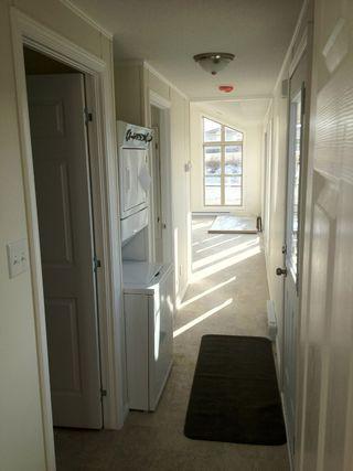 Photo 13: ML-403 Cottage