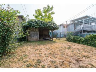 Photo 10: 3381 E 23RD Avenue in Vancouver: Renfrew Heights House for sale (Vancouver East)  : MLS®# R2196086