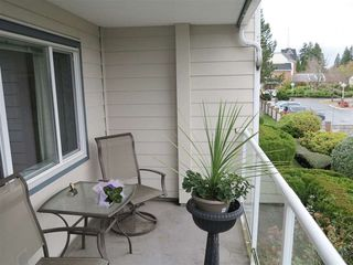 Photo 10: 203 13965 16 AVENUE in South Surrey White Rock: Home for sale : MLS®# R2015117