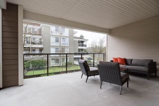 Photo 12: 202 2484 WILSON AVENUE in Port Coquitlam: Central Pt Coquitlam Condo for sale : MLS®# R2241018