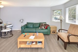Photo 3: 108 918 RODERICK AVENUE in Coquitlam: Maillardville Condo for sale : MLS®# R2203603