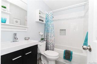 Photo 11: 291 Woodbine Avenue in Winnipeg: Riverbend Residential for sale (4E)  : MLS®# 1807984