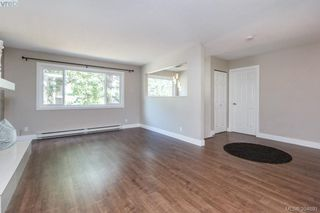 Photo 4: 1573 Arbordale Avenue in VICTORIA: SE Mt Doug Single Family Detached for sale (Saanich East)  : MLS®# 394691