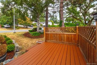 Photo 18: 1573 Arbordale Avenue in VICTORIA: SE Mt Doug Single Family Detached for sale (Saanich East)  : MLS®# 394691