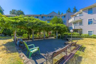 "Photo 16: 214 450 BROMLEY Street in Coquitlam: Coquitlam East Condo for sale in ""Bromley Manor"" : MLS®# R2292602"