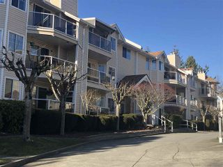 "Main Photo: 117 22611 116 Avenue in Maple Ridge: East Central Condo for sale in ""ROSEWOOD COURT"" : MLS®# R2297230"