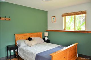 Photo 26: 10003 West Coast Rd in SHIRLEY: Sk French Beach Single Family Detached for sale (Sooke)  : MLS®# 795870
