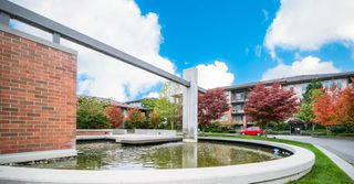"Photo 13: 215 9199 TOMICKI Avenue in Richmond: West Cambie Condo for sale in ""Meridian Gate"" : MLS®# R2310993"