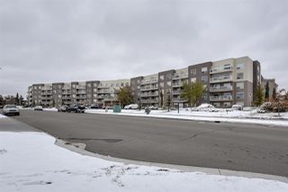 Main Photo: 215 17404 64 Avenue in Edmonton: Zone 20 Condo for sale : MLS®# E4137364