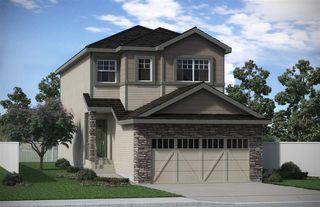 Main Photo:  in Edmonton: Zone 56 House for sale : MLS®# E4137870