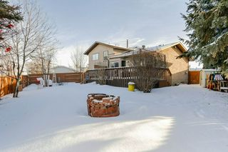 Photo 29: 7604 189 St NW in Edmonton: Zone 20 House for sale : MLS®# E4140355