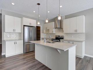 Photo 12: 19 COPPERHAVEN Drive: Spruce Grove House for sale : MLS®# E4144305