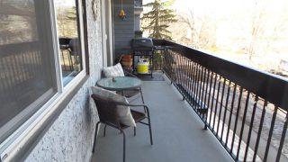 Photo 7: 316 11217 103 Avenue in Edmonton: Zone 12 Condo for sale : MLS®# E4149779
