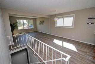 Photo 10: 41 Woodydell Avenue in Winnipeg: Meadowood Residential for sale (2E)  : MLS®# 1908712