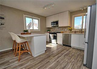 Photo 3: 41 Woodydell Avenue in Winnipeg: Meadowood Residential for sale (2E)  : MLS®# 1908712