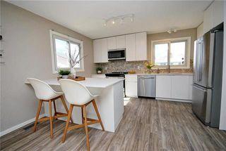 Photo 5: 41 Woodydell Avenue in Winnipeg: Meadowood Residential for sale (2E)  : MLS®# 1908712