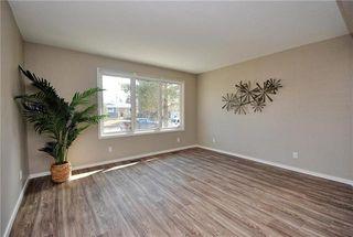 Photo 8: 41 Woodydell Avenue in Winnipeg: Meadowood Residential for sale (2E)  : MLS®# 1908712