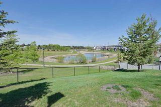 Photo 24:  in Edmonton: Zone 53 Condo for sale : MLS®# E4158240