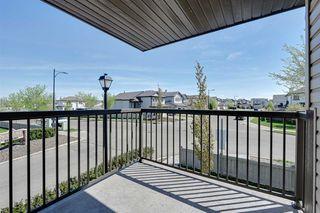 Photo 20:  in Edmonton: Zone 53 Condo for sale : MLS®# E4158240