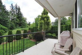 """Photo 19: 24095 MCCLURE Drive in Maple Ridge: Albion House for sale in """"MAPLE CREST"""" : MLS®# R2380726"""