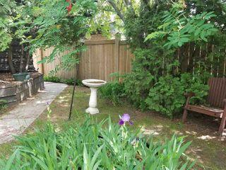 Photo 5: 14408 101 Avenue in Edmonton: Zone 21 House for sale : MLS®# E4162542
