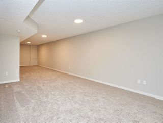 Photo 26: 5672 JUCHLI Avenue in Edmonton: Zone 27 Attached Home for sale : MLS®# E4172073