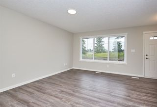 Photo 3: 5672 JUCHLI Avenue in Edmonton: Zone 27 Attached Home for sale : MLS®# E4172073