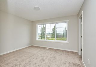 Photo 23: 5672 JUCHLI Avenue in Edmonton: Zone 27 Attached Home for sale : MLS®# E4172073