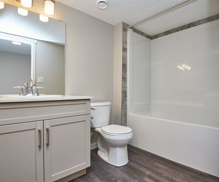 Photo 28: 5672 JUCHLI Avenue in Edmonton: Zone 27 Attached Home for sale : MLS®# E4172073