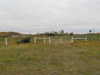 Photo 10: 421076 RR 95: Rural Provost M.D. House for sale : MLS®# E4174977
