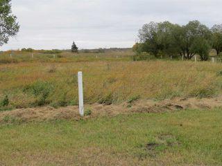 Photo 6: 421076 RR 95: Rural Provost M.D. House for sale : MLS®# E4174977