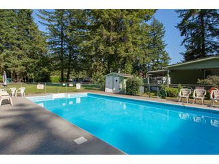 Photo 20: 231 20071 24 AVENUE in Langley: Brookswood Langley Manufactured Home for sale : MLS®# R2400378
