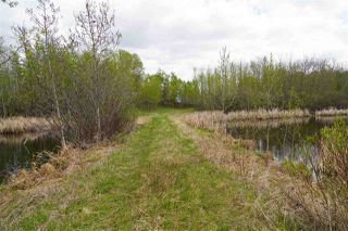 Photo 3: Range Road 233 TWP 520 NW: Rural Strathcona County Rural Land/Vacant Lot for sale : MLS®# E4179287
