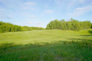 Photo 11: Range Road 233 TWP 520 NW: Rural Strathcona County Rural Land/Vacant Lot for sale : MLS®# E4179287