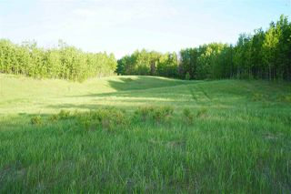 Photo 7: Range Road 233 TWP 520 NW: Rural Strathcona County Rural Land/Vacant Lot for sale : MLS®# E4179287