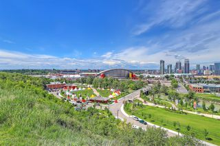 Photo 42: 304 63 INGLEWOOD Park SE in Calgary: Inglewood Apartment for sale : MLS®# A1012849