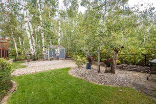 Photo 41: 5003 210 Street in Edmonton: Zone 58 House for sale : MLS®# E4214116