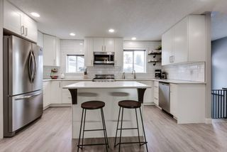 Photo 14: 9 Lawrence Crescent: St. Albert House for sale : MLS®# E4219218