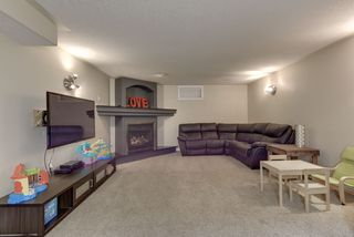 Photo 28: 9 Lawrence Crescent: St. Albert House for sale : MLS®# E4219218